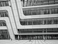 Lines (madbesl) Tags: noiretblanc lines mono wien vienna österreich austria europa europe city stadt modern architecture architektur modernarchitecture modernearchitektur monochrom buw schwarzweis wuwien olympus omd em10 m10 omdem10 zuiko1250