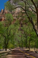 Zion National Park (hippyczich) Tags: zion national park utah america