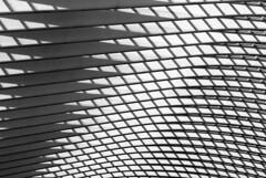 calatravando (Bim Bom) Tags: calatrava abstract liège guillemeins wallonia belgium liègeguillemins