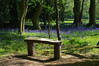 Coton Manor Garden, Northampton (Blue sky and countryside) Tags: bluebell woods cotonmanorgardens northamptonshire beautiful perfume scent admire bench rest may 2018 england pentax