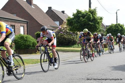Zandhoven (461)
