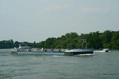 TMS RETURN (Lutz Blohm) Tags: tmsreturn tankschiff rhein rheinschifffahrt binnenschifffahrt binnenschiffe gütermotorschiff fluskilometer418 fe70300goss sonyalpha7aiii