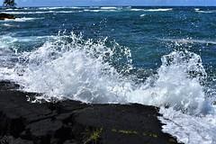 Standing on lava rock (thomasgorman1) Tags: splach wave crashing sea ocean shore coast lavarock hilo onekahakaha ledge nature rocks island pacific waves scenic nikon