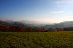 Lindenfels0001 (schulzharri) Tags: deutschland germany odenwald wald ausen outside forrest wood sun sky