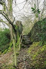 Wales, 1999 (elevenmonthsinexile) Tags: aberystwyth chinongenesisiii film wales wales1999