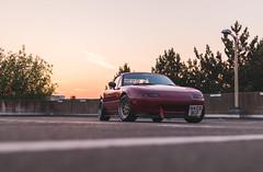 IMG_4467 (tom_acton) Tags: mazda mx5 eunos roadster red sparkle 3m cinder fifteen52 formula tr low sportscar jdm japanese sunset