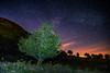 Plas Curig (Nic Taylor Photography) Tags: commercialphotographer foodphotographer nictaylorphotography photographer astrophotography samyang samyangaf samyanglensglobal samyangpassionate samyangaf35mmf14fe 35mmf14 35mm fullframe stars nighttime landscape