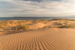 Furrowed Dunes, Sleeping Bear Point (Aaron Springer) Tags: michigan northernmichigan lakemichigan thegreatlakes sleepingbearpoint manitouislands dune sand water clouds sunrise spring may outdoor nature landscape