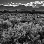 Looking Across the Chihuahuan Desert to Peaks of the Chisos Mountains (Black & White, Big Bend National Park) thumbnail