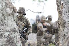 20180504_NZDF_R1055140_004 (Royal New Zealand Navy) Tags: unclassified army infantry tropicmajor na vanuatu