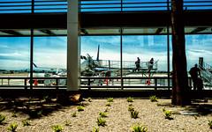Last call .. (Visavis..) Tags: fujix100 usa california airport 35mmequiv people reflections plants palm plane longbeach passengers deepcontrast