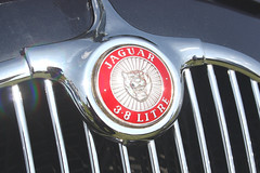 1959 Jaguar 3.8 Litre Saloon. (Yesteryear-Automotive) Tags: jaguar 38 litre saloon automobile motorcar car badge