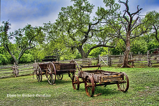 Wagons on the Lyndon B. Johnson farm