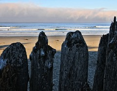 On the beach at sunrise (Starkrusher) Tags: sunrise beach oregon oregonbeach fence