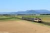 Les dernières (Lion de Belfort) Tags: train chemin de fer sncf ter rrr bb 25500 danceuse 25670 hautkoenigsbourg kogenheim ebersheim alsace château ebersmunster