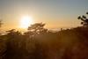 (daniel.hughley) Tags: watermanmountain angelescresthighway angelesnationalforest bunny cran hiking nighthike