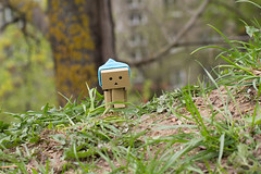 spring days (olgabrezhneva) Tags: danboard amazon japan toys danbo revoltech minifigure toy plastic figure figurine minifigurine figures dollphotographer dollphotography toypics toyphotographer miniature danboo animal