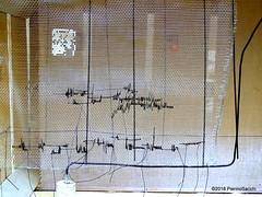 O4282646 (pierino sacchi) Tags: archeologia arte gipsoteca incontri museo unipv