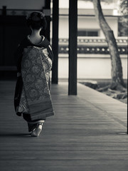 Maiko_20180305_11_11 (Maiko & Geiko) Tags: 20180305 hyakumanben chionji temple fukuno kyoto maiko 舞妓 ふく乃 京都 宮川町 河よ志 miyagawacho kawayoshi 百萬遍知恩寺 gaap