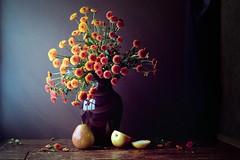 Pears (Luiz L.) Tags: vermelho