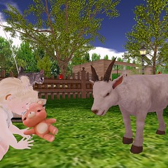 Hello Mister Goat! (bearritto) Tags: daisy crowley daisycrowley toddler toddleedoo alice bad seed bebe body sl secondlife second life family daughter cute kawaii sweet adorable photo snapshot photography child children roleplay kid baby rp spam flickr art picture drawing colour color colouring crayon marker pencil illustration play playing home twins twin flowers flower hello mister misser goat zoo petting