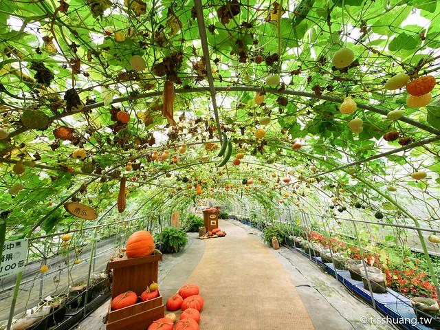 旺山休閒農場-1270012