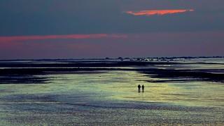 Dreamy Normandie's Night rush