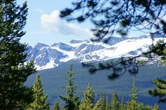 OpalHiills00027 (jahNorr) Tags: summertrip 2012 canadaalbertajaspernationalparkopalhills