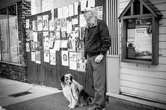 waiting (observed.by.diane) Tags: man dog waiting blackwhite street cumberland bc