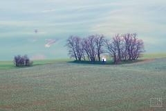 093_Moravian_Tuscany (Overtherainbow changes to KV Photography) Tags: katerinavodrazkova kvphotography landscape moravsketoskansko morava krajina šardice moraviantuscany jiznimorava southmoravia