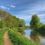 Walk along the river Kromme Rijn in Odijk, Netherlands - 1032 thumbnail