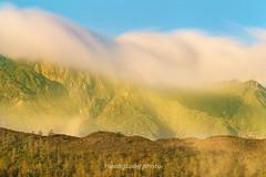 _Y2U9959.1116.Sả Sáng.Sa Pả.Sapa.Lào Cai. (hoanglongphoto) Tags: asia asian vietnam northvietnam northwestvietnam morning sunlight sunny sunnymorning landscape scenery vietnamlandscape vietnamscene vietnamscenery sky bluessky cloud mountain mountainouslandscape longexposure canon canoneos1dx tâybắc làocai sapa hầuthào buổisáng nắng nắngsớm núi phongcảnh phongcảnhtâybắc bầutrời bầutrờimàuxang mây hoàngliênsơn núihoàngliên chụpchậm chụpphơisáng sườnnúi hill ngọnđồi treehill đồicây canonef200mmf28lusm2xiii hoanglienmountain flanksmountain nature natureinsapa