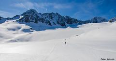 Bachfallenkopf  and Bachfallenferner _DSC1282 (peter-goettlich) Tags: winnebachseehütte österreich tirol gletscher berg schnee
