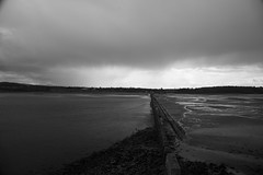 Lauriston and Crammond with Alastair April 2018 (118 of 126) (Philip Gillespie) Tags: crammond lauriston castle keep gardens park green blue red yellow orange colour color mono monochrome black white sea seascape landscape sky clouds drama dramatic walkway path flowers leaves trees april spring defences canon 5dsr people rust metal grafitti man dog petals bluebells dafodils holly blossom pond forth water wet rain sun reflections architecture mirrors gold japan garden sunlight scotland