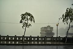 boat on West Lake (InSoManyWords) Tags: film 35mm fujisuperia200 fujifilm rollei35 hanoi vietnam westlake mist