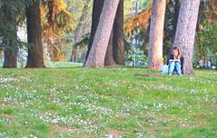 relax (poludziber1) Tags: milano italia italy people park green travel
