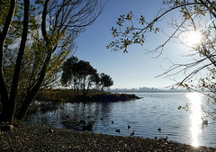 Early morning Lake Wendouree (The Pocket Rocket, On and Off.) Tags: lakewendouree ballarat earlymorning victoria australia