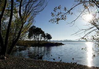 Early morning Lake Wendouree