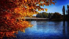 Stein am Rhein (katarzynawozniak@yahoo.co.uk) Tags: visiting samsunggalaxy colours autumn fall bridge river switzerland steinamrhein