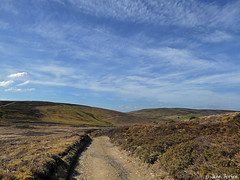 Glyndwr's Way 009 (Row 17) Tags: wales powys nationaltrail path footpath rural moor moorland hillside lumix panasonic