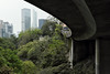 Viaduct (martyr_67) Tags: viaduct garden hongkong