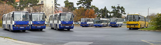 Ikarus 260.06 #CLH-610