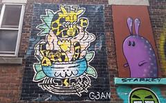 5043 Av du Parc Graffiti (Coastal Elite) Tags: mileend alley north parc avenue montreal ruelles ruelle alleys alleyway alleyways graffiti walking montréal streetart urban city life street art urbain mile end 5043parc wabbit starkywoods lapin bunny rabbit starky woods starkeywoods starkey