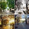 Four seasons (letkata) Tags: spring autumn summer winter seasons fourseasons streetphotograpy street hungary magyarország vác