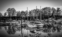 Milltown Marina & Boatyard (SonjaPetersonPh♡tography) Tags: vancouver bc britishcolumbia canada nikon nikond5300 marina milltown milltownmarinaboatyard bentleyst facility moorage boaters boats marpole waters fraserriver northarm straightofgeorgia marinestore yachts restaurant sales vessels recreation docks