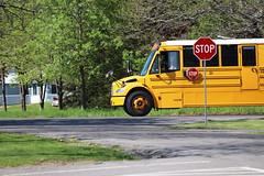 Freeman Bus Corp. #30 (ThoseGuys119) Tags: freemanbuscorp schoolbus watertownny thomasbuilt freightliner fs65 c2 saftliner yellowbumpers