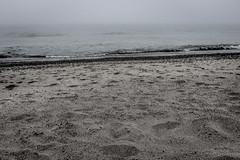 DSCF9795-Edit-Edit (carolea2014) Tags: blackwhite lakemichigan miad2 sand beach