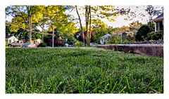 The Morning Dew (Timothy Valentine) Tags: 2018 0518 dew lawn home 169 eastbridgewater massachusetts unitedstates us