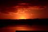 The Cook Straits Ferry - (Film) (Harald Philipp) Tags: sunrise clouds wellington harbor harbour ferry cookstraits water sea dawn orange dramaticsunrise newzealand