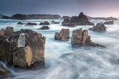 Pacific Grove (tompost) Tags: pacificgrove california sunrise water landscape monterey coastline